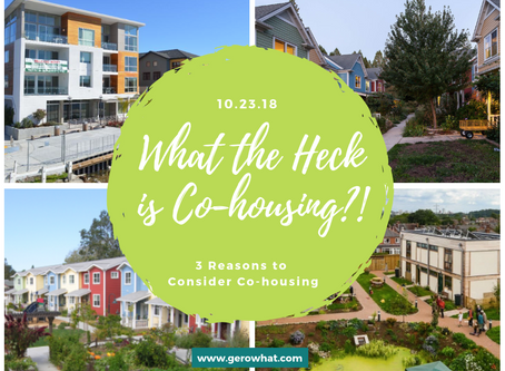 What the Heck is Co-housing?!: 3 Reasons to Consider Co-housing