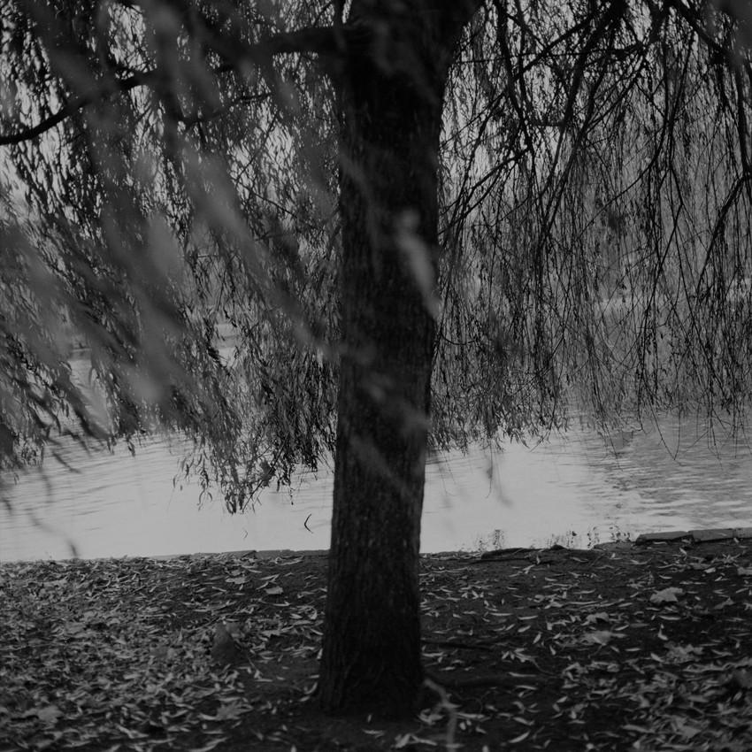 film120-1-4.jpg