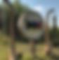 Screen Shot 2020-05-01 at 8.44.08 AM.png