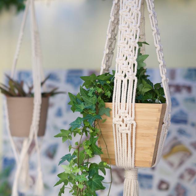 Macramé Planthangers by TEX MB