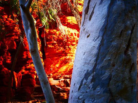 Karijini to Broome – 40 Years and the End of Part 1