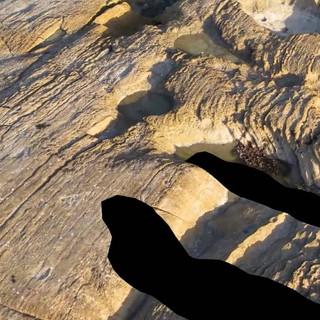 Intertidal UAV Survey