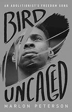 BirdUncaged%20Image_edited.jpg