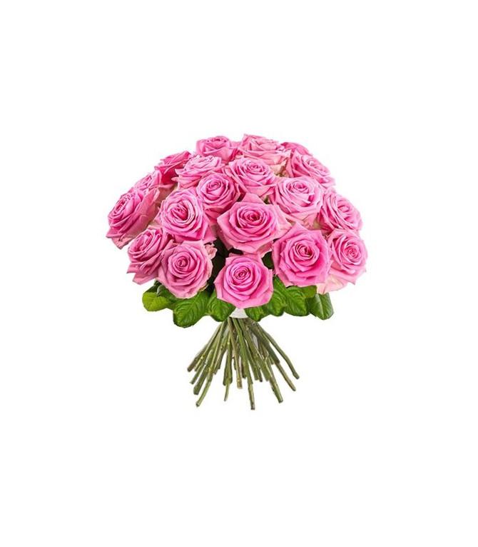 Reiki enchendo o corpo de amor, agregando a essência da flor e a luz da cromoterapia