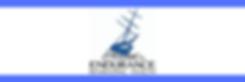 Blue Lead_ Endurance Behavioral Health.p