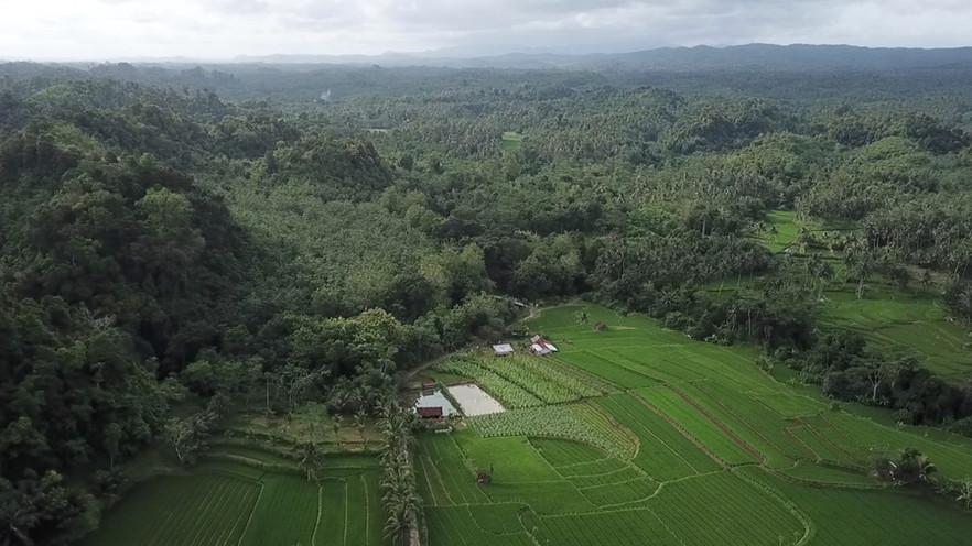 Desa Wisata Series : Selasari, Sisi Sejuk Pangandaran