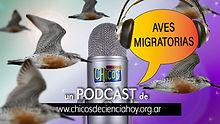 flyer_Podcast_AvesMIgra_16_9.jpg