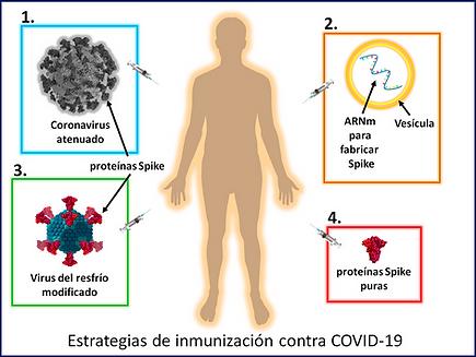 Vacunas Fig1.png
