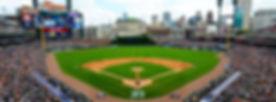 tigers baseball.jpg