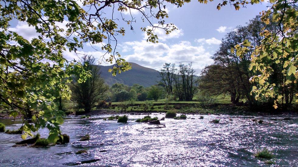 River Talybont.jpg