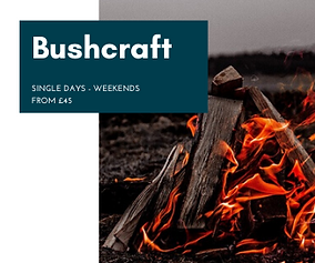 Bushcraft Course