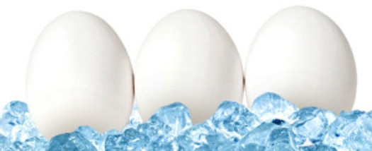 eggs-on-ice-hollywood-journal