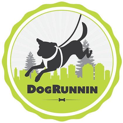 Dog Runnin