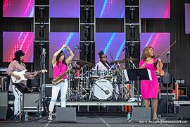 Jazz In Pink
