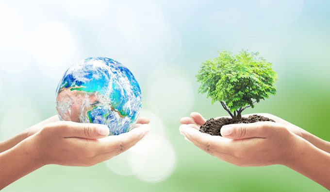 two children's hands left holding a globe orb and the right holding a small tree in dirt