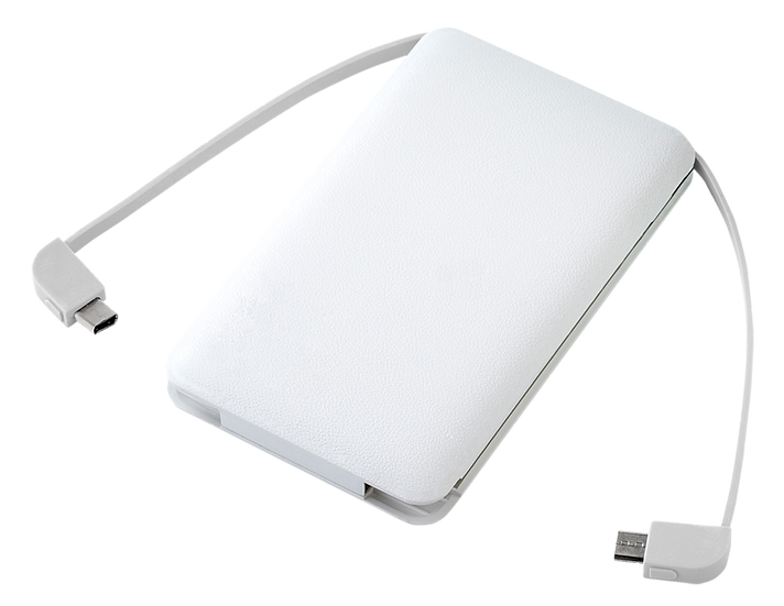 SM-ALL - Powerbank avec embouts USB-C / micro USB / Lightning