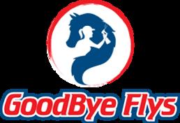 Goodbye Flys