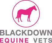Blackdown Equine Vets logo large.jpg