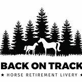 Back on Track logo.jpeg