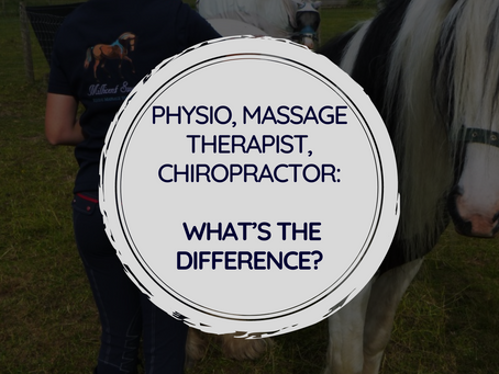 Physio, Massage Therapist, Chiropractor: What's the Difference?