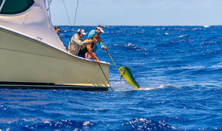 Uncharted Waters Anguilla - Day 2-88.JPG