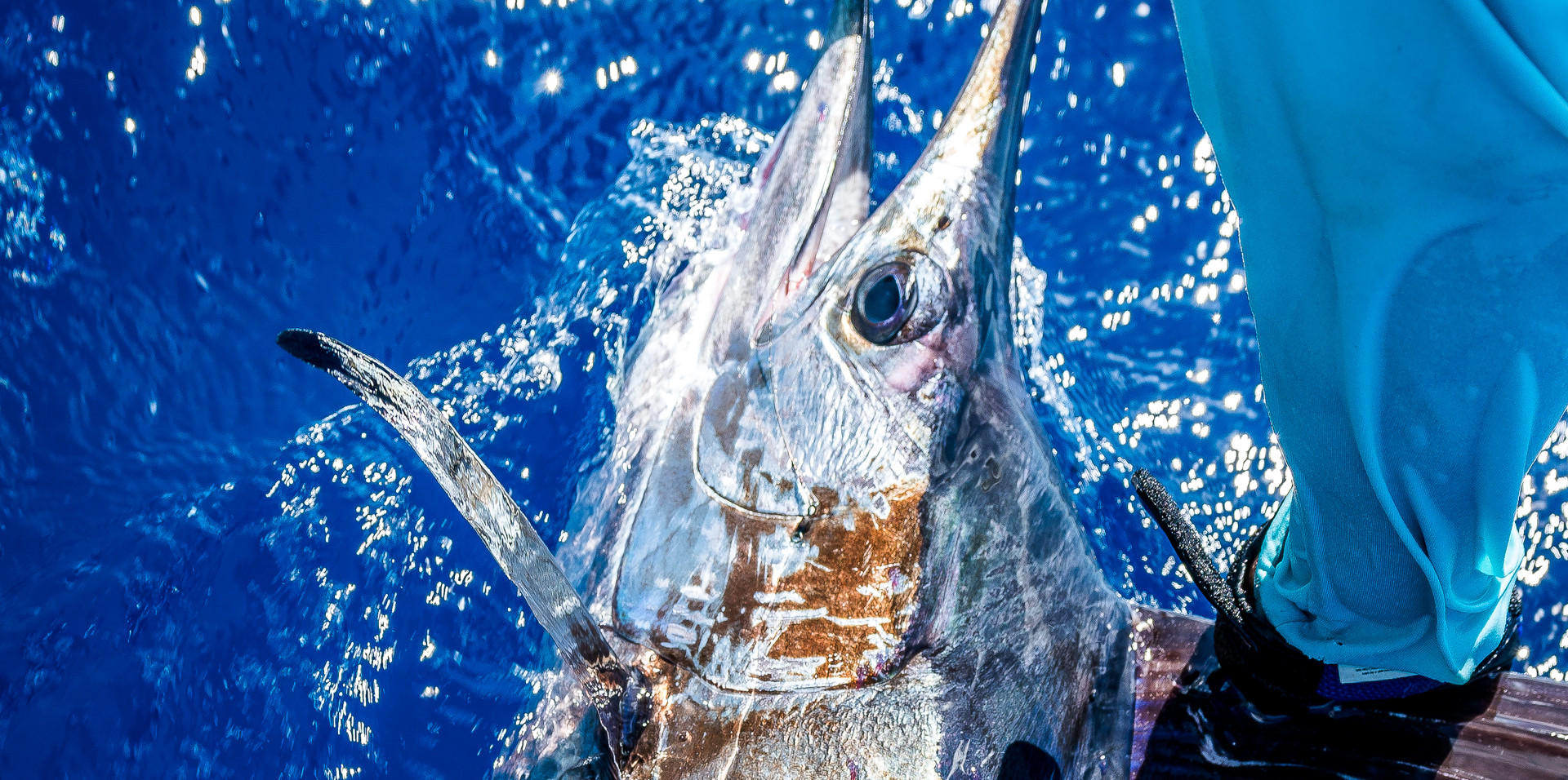 M&M Fishing Charters-17.JPG
