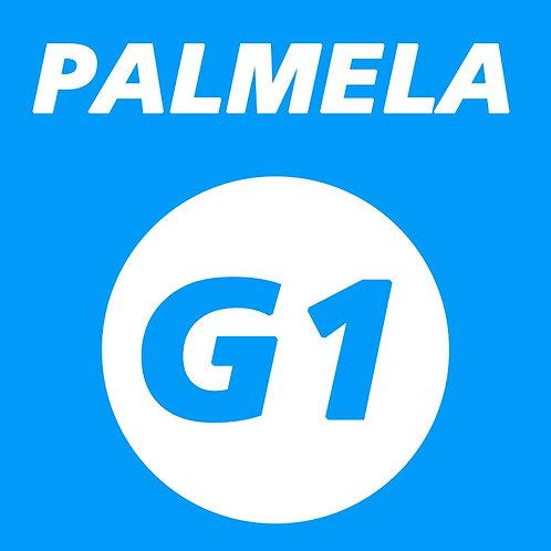 Palmela - 6 de Março 2021 - Grupo 1
