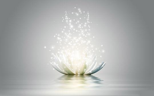 Lahochi - Lotus magique