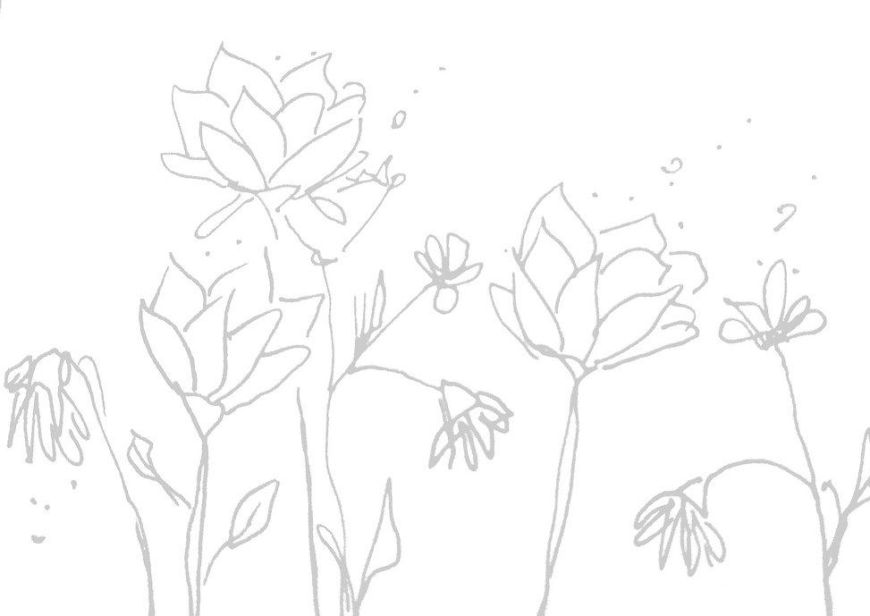 Roses dessin par Jungle Head