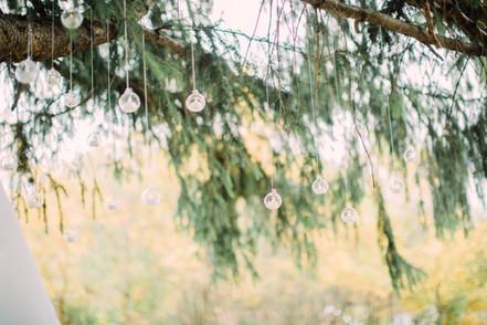 kelsey kradel photography_ backyard wedd