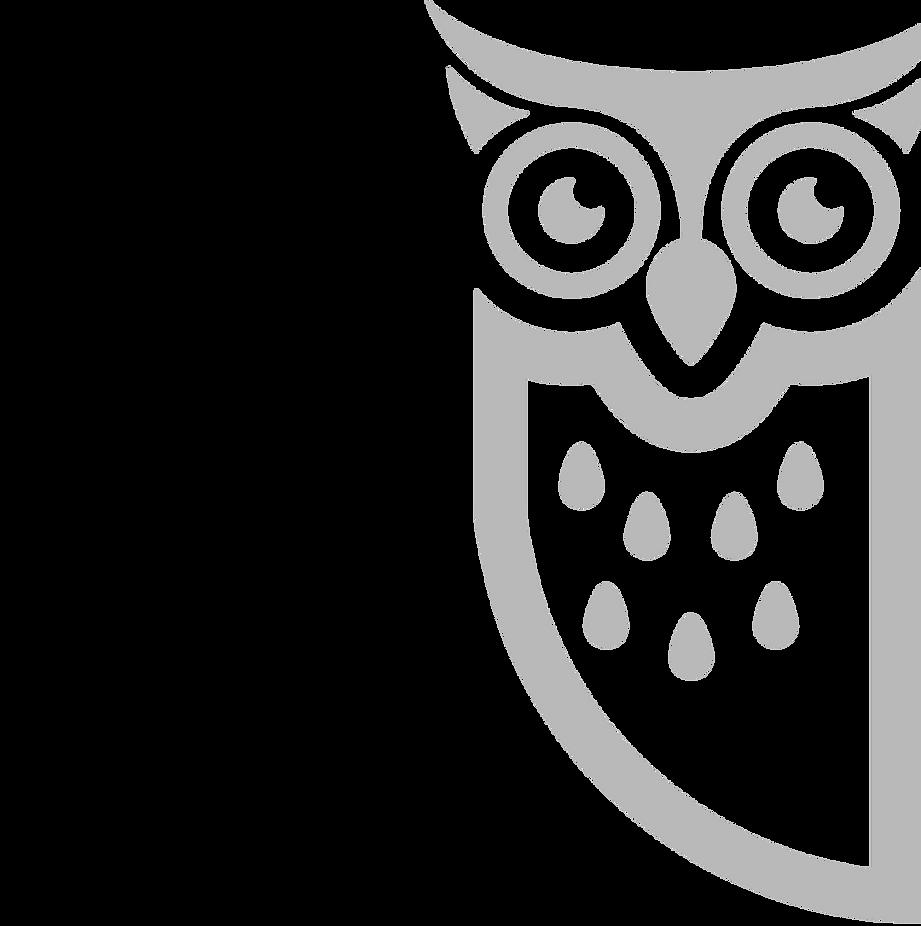 Blue Owl Standing Logo