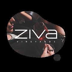 Ziva Wines