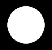 circle_white-37.png