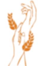 mains-naturopathie-dessin-leda.png