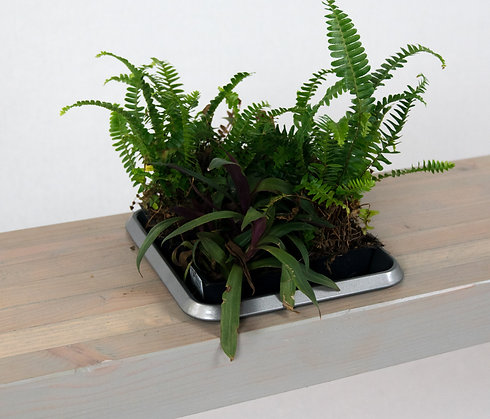 Planter Benches - made to order