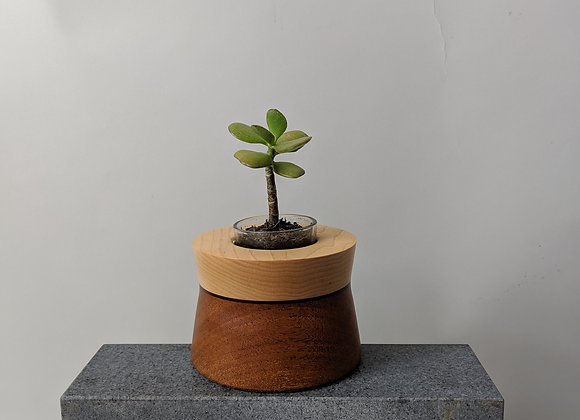 Honey Pot | Maple + Dyed Birch + Mahogany