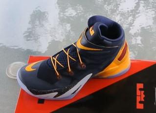 Nuevo par de zapatillas para personas con discapacidad - NIKE - Lic. Favio Montané
