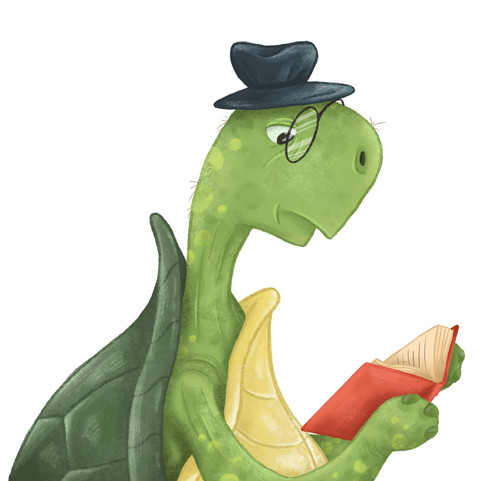 Tortoise Character