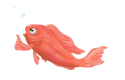 Fish Character Design