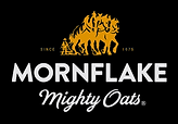 mornflake_logo.png