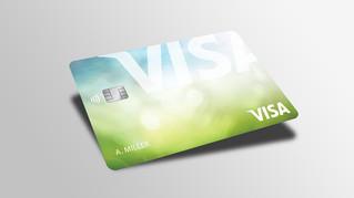 Estas son las actividades de Visa en la SNEF