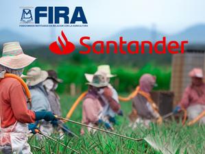 FIRA lanza el primer Bono Social de Género en México