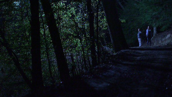 Still from 'Below the Trees'
