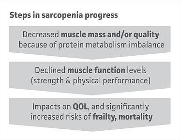01 Steps in sarcopenia progress.jpg