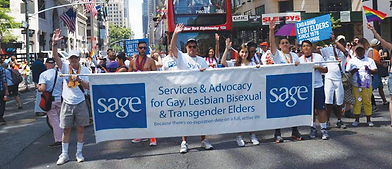 Volunteer_Manager_Article_SAGE_banner.pn