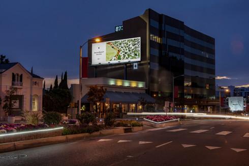 LA_Sunset Plaza_2A1A3882_V1.jpg