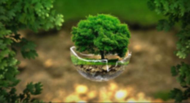 Экологические услуги СПб