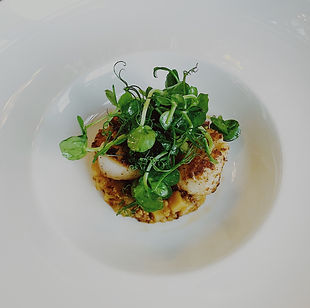 Seafood scallop dish with peashoots
