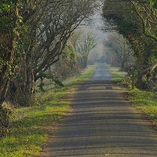 Tarka Trail cycle route in Devon