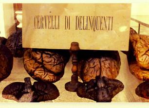 Lombroso e il museo Horror-Steampunk